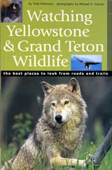 Yellowstone and Grand Teton National Parks